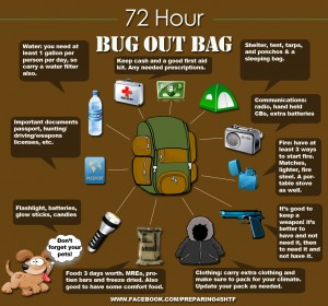 72 Hour Bug Out Bag Infographic