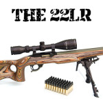 10 reasons for a 22LR Firearm
