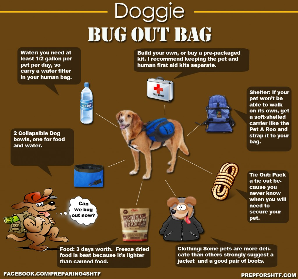 Dog Bug Out Bag