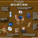 Dog Bug Out Bag – Infographic