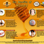 Six Benefits of Honey Infographic