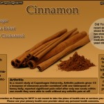 Cinnamon Benefits Infographic