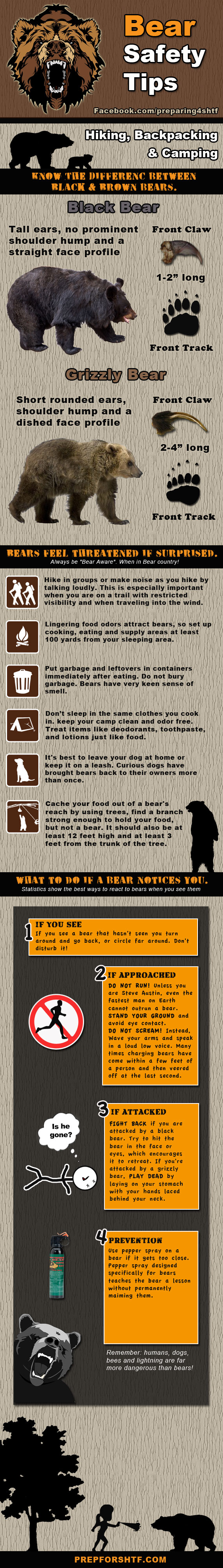 Bear Safety Tips