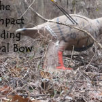 Primal Gear Unlimited Compact Folding Survival Bow