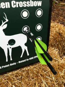 Crossbow Target 1