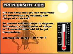 Cricket Chirps Temperature Formula