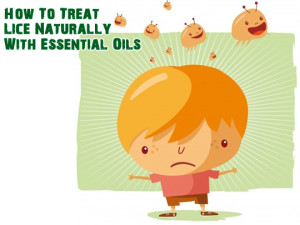 Treat lice with essential oils
