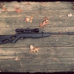 Gamo Silent Stalker Whisper IGT Air Rifle  Review