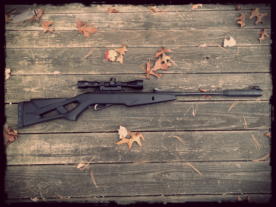 Gamo Silent Stalker Whisper IGT Air Rifle Review - Preparing