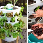 Grow 53 Plants in 4 Square Feet