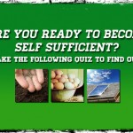 Are You Ready To Become Self Sufficient?
