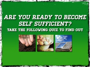Self Sufficient Quiz
