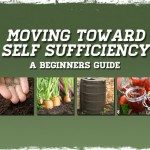 Moving Toward Self Sufficiency: A Beginners Guide