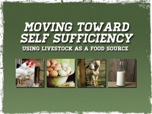 Self Sufficiency Livestock