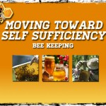 Moving Toward Self Sufficiency: Bee Keeping