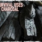 6 Survival Uses for Charcoal