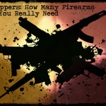 Preppers: How Many Firearms Do You Really Need