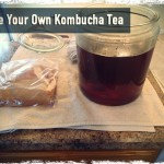 Make Your Own Kombucha Tea