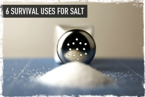 six survival uses for salt