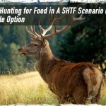 Will Hunting for Food in A SHTF Scenario Be a Viable Option