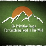 Six Primitive Traps For Catching Food In The Wild