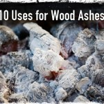 10 Uses for Wood Ashes