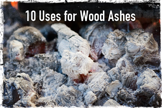 Wood Ashes