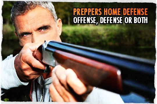 Prepper Home Defense