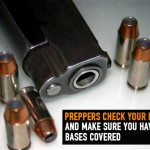 Preppers Check Your Firearms and Make Sure You Have the Bases Covered