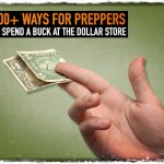 100+ Ways for Preppers to Spend a Buck at the Dollar Store