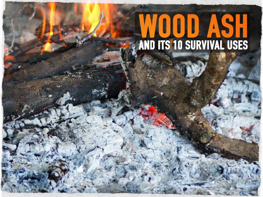 Wood Ash Survival Uses