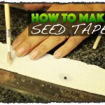 How To Make Seed Tape