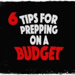 6 Tips for Prepping on a Budget