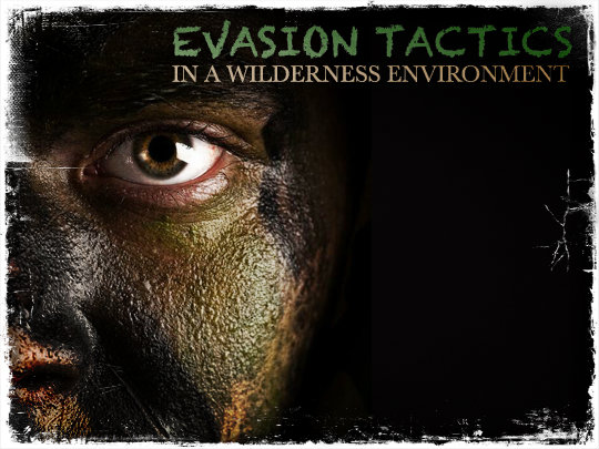 Evasion Tactics Wilderness Environment