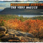 Wilderness Survival: The Very Basics