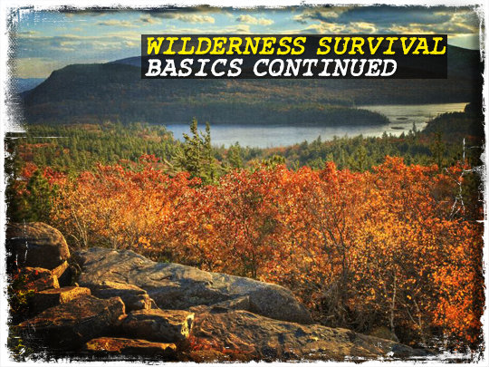Wilderness Survival Basics Continued
