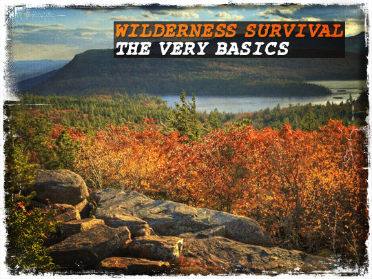 Wilderness Survival