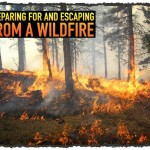 Preparing For and Escaping From a Wildfire