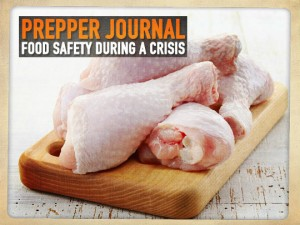 Food Safety Crisis