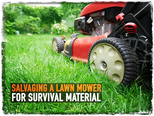 Lawn Mower Survival