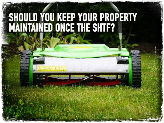 Push Mower SHTF
