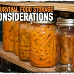 6 Survival Food Storage Considerations