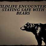 Wildlife Encounters: Staying Safe with Bears