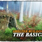 Shelter Building: The Basics