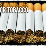 5 Survival Uses for Tobacco