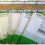 The Best Way to Store Seeds for When The SHTF