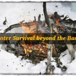 Winter Survival beyond the Basics