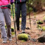 11 Advantages of Using Trekking Poles When Hiking