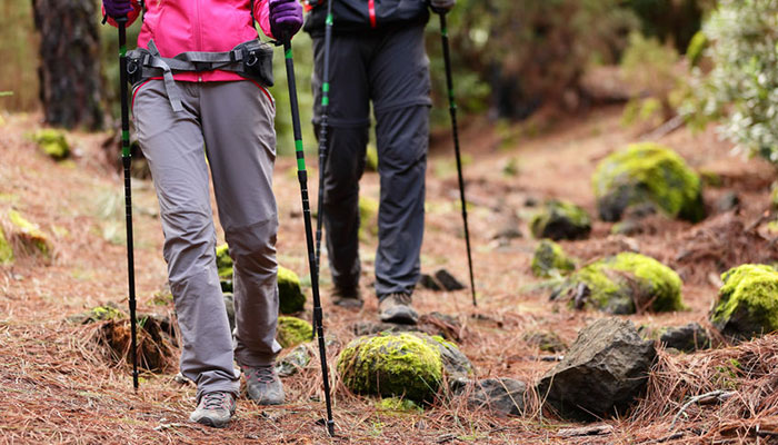 Trekking Poles, Also Called Hiking Sticks, Hiking Poles, Walking/hiking  Staff, Or Walking Poles Are Designed To Aid Walkers With Their Rhythm As  They Walk ...
