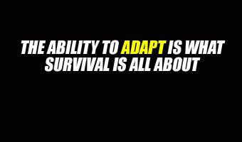 The Ability to Adapt Is What Survival Is All About